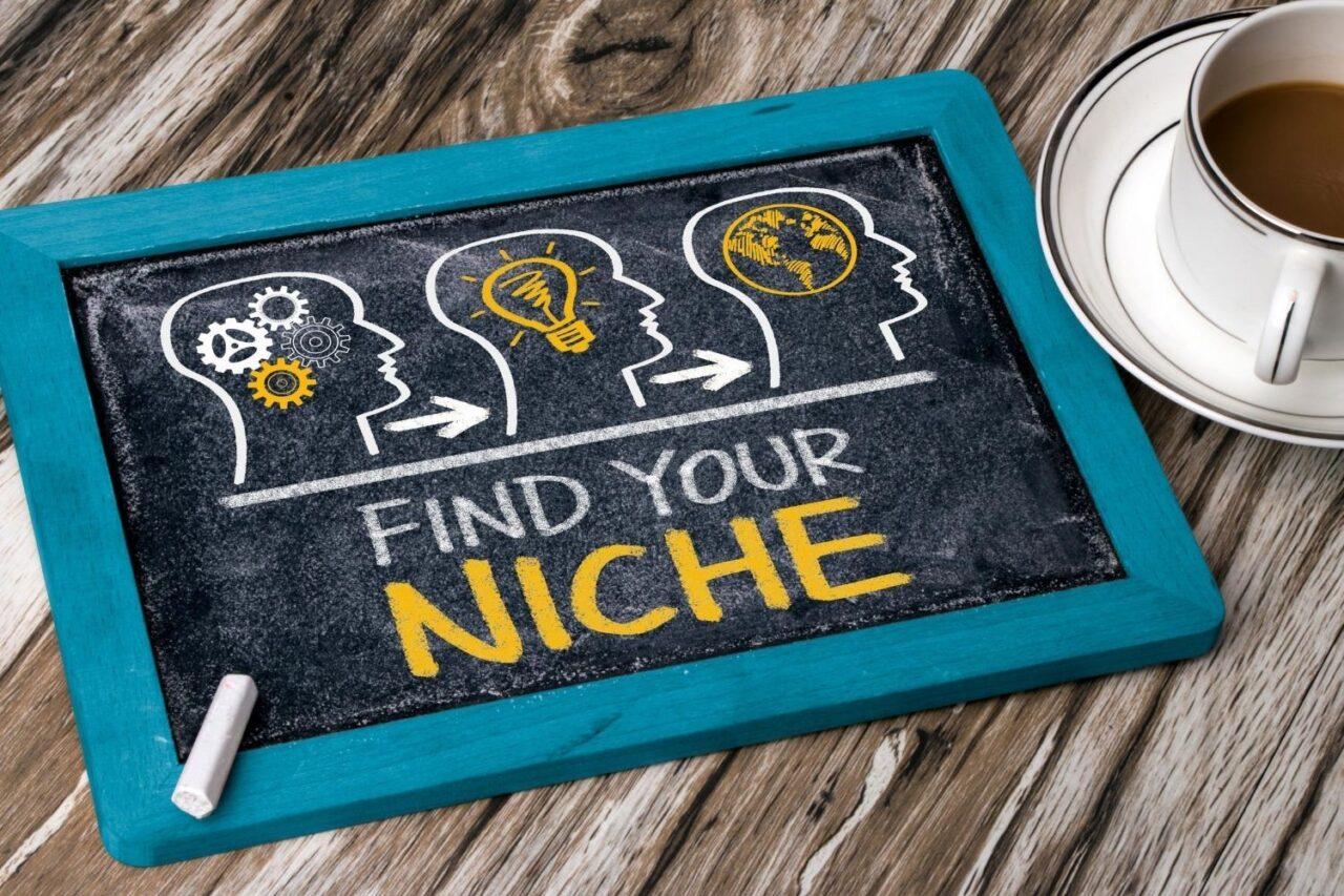 Defining A New Niche